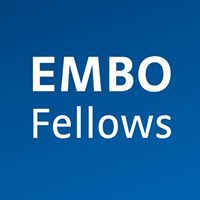 EMBO FELLOWS